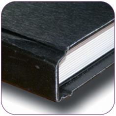 dissertation binding ann arbor